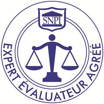 logo-cnpi